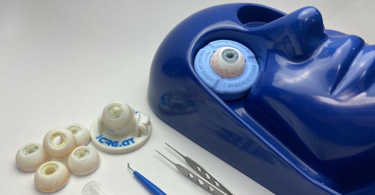 stratasys-3d-printed-eye.jpg